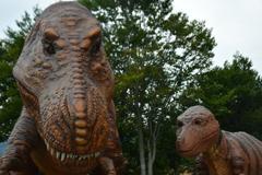 恐竜街道。