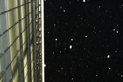 広島に雪が舞う。
