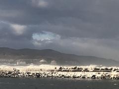 久しぶりのオホーツク海。珍しく荒れてました。