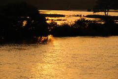 落陽の江戸川