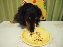 ケーキをほおばるアローちゃん