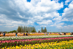 あけぼの山農業公園3