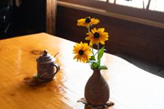 喫茶店のルドベキア