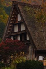 秋の白川郷③