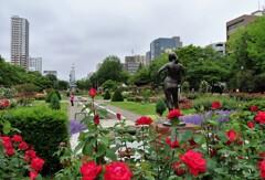 街中の花園 2