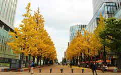 赤レンガ前広場