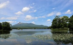 沼と山と水面の花