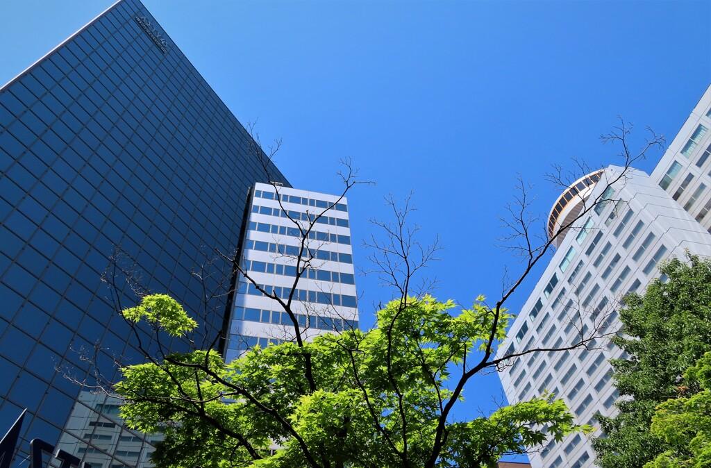 都会の青い空
