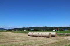 干し草ロールのある風景 5