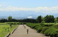 北海道100年記念塔 3