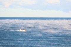 気嵐を行く漁船
