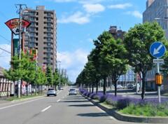 札幌のある街並み