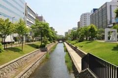 札幌散歩24 創成川緑地
