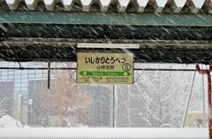 緩い吹雪!