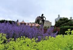 街中の花園 1