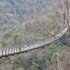 210111吊橋5