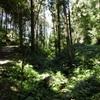 200829風景.8