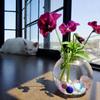 210421花と猫