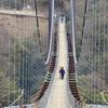 210111吊橋2