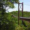 200505吊橋