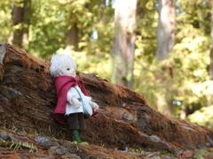 201013人形のいる風景4