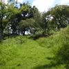 200905風景