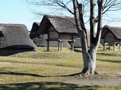 登呂遺跡~住居と高床倉庫