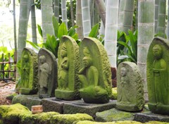 鎌倉散策~癒しの地蔵・報国寺