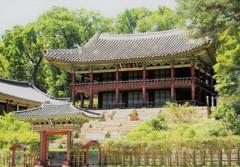 朝鮮王朝の宮殿・昌徳宮[韓国の旅③]