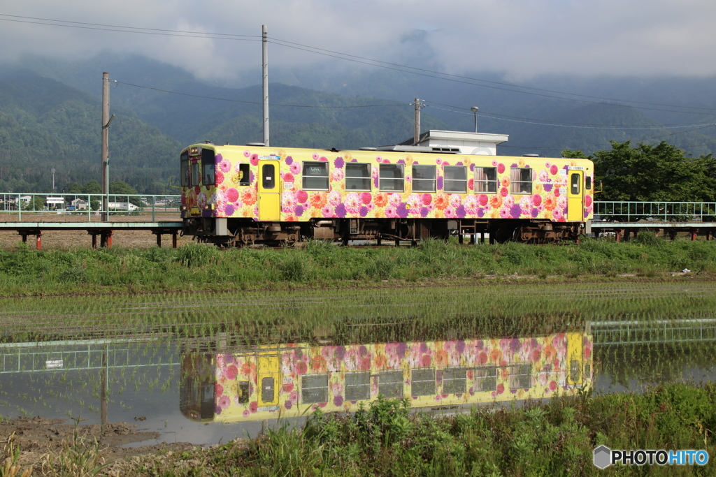 フラワー長井線