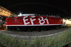 EF8195  カシオペア