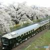 大河原千本桜とジパング