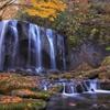 晩秋の不動滝