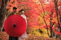 旅立ちの秋