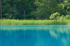 裏磐梯の青
