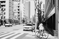 麻布サイクリング