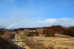 春への懸け橋