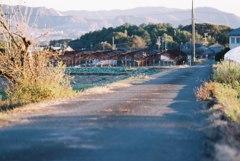 フィルムで、田舎道と錆びたハウス