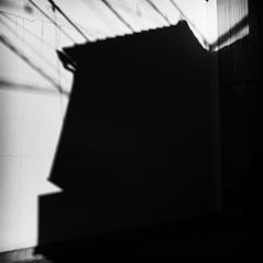 IMG_5606-Edit-2