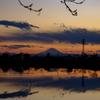 伊佐沼 富士山