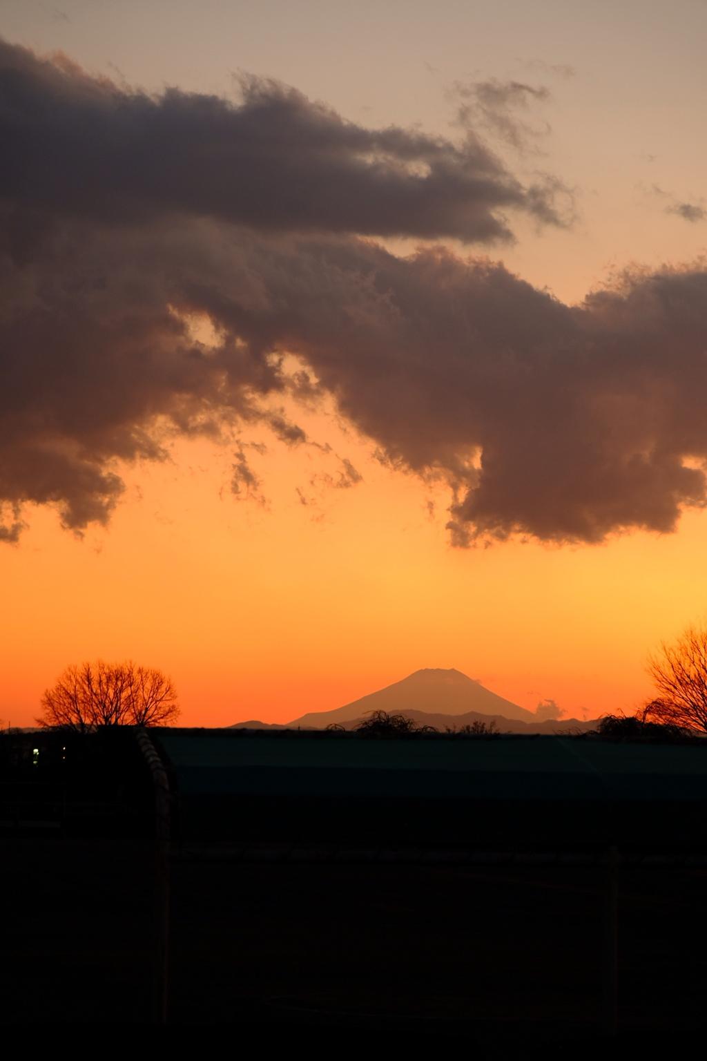 やっぱ富士山が好き♪