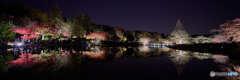ワイドで見る昭和記念公園の「夜の秋散歩」
