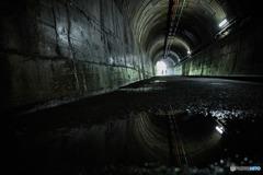 新緑へと導くトンネル