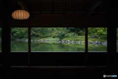 日本庭園を眺めて