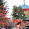 高野山、根本大塔と紅葉