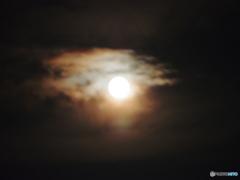 Strawberry MoonⅡ