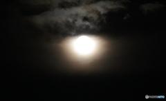 Strawberry Moon Ⅰ