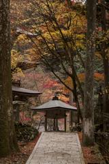 ヒカリノアトリエ in横蔵寺