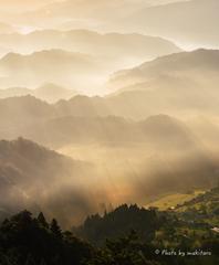 彩雲の眠る森