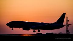瀬戸の夕陽 着陸の時